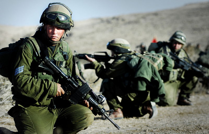 800px-Flickr_-_Israel_Defense_Forces_-_Karakal_Winter_Training